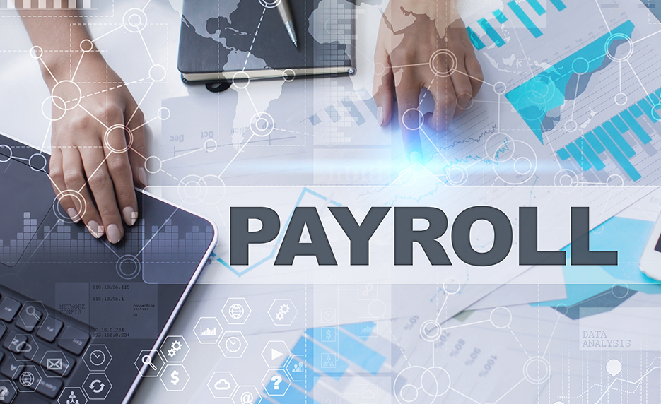 Payroll Manager Bundle